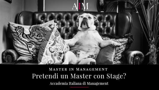 borsa di studio master attestato master master con stage job placement accademia italiana di management master in management corso alta formazione stage