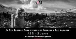 project work project working project work esempi idee per project work master project work master esempio master in management accademia italiana di management aim roma
