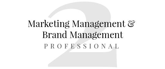 master in marketing management master in brand management brand advertising brand management brand reputation brand strategy marketing operativo professional