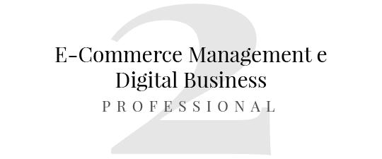 master in e commerce master in digital business attivita di vendita online miglioramento continuo contabilità e bilancio controllo di gestione pro