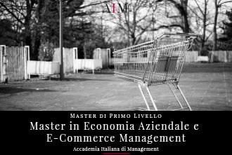 master in economia aziendale e e-commerce management master in management master di primo livello business school aim roma
