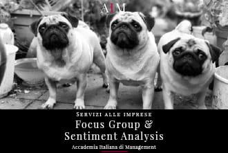 focus group sentiment analysis servizi alle imprese focus group significato focus group definizione focus group online focus group esempio aim roma indice