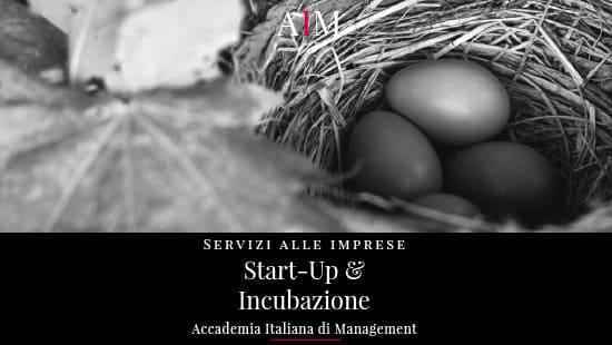 cos e una start up registro imprese significato esempio di start up accademia italiana di management business school master mba roma copertina