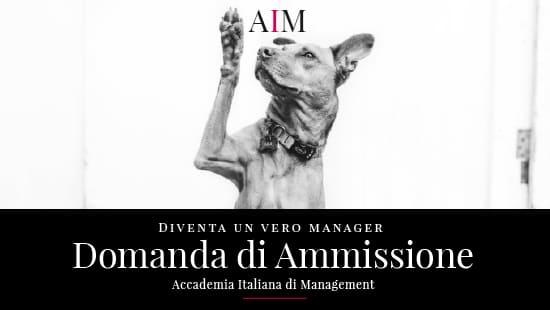 accademia italiana di management master in management aim business school roma domanda di ammissione copertina